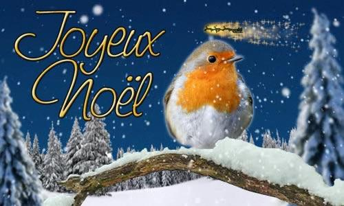 2016 joyeux noel oiseau