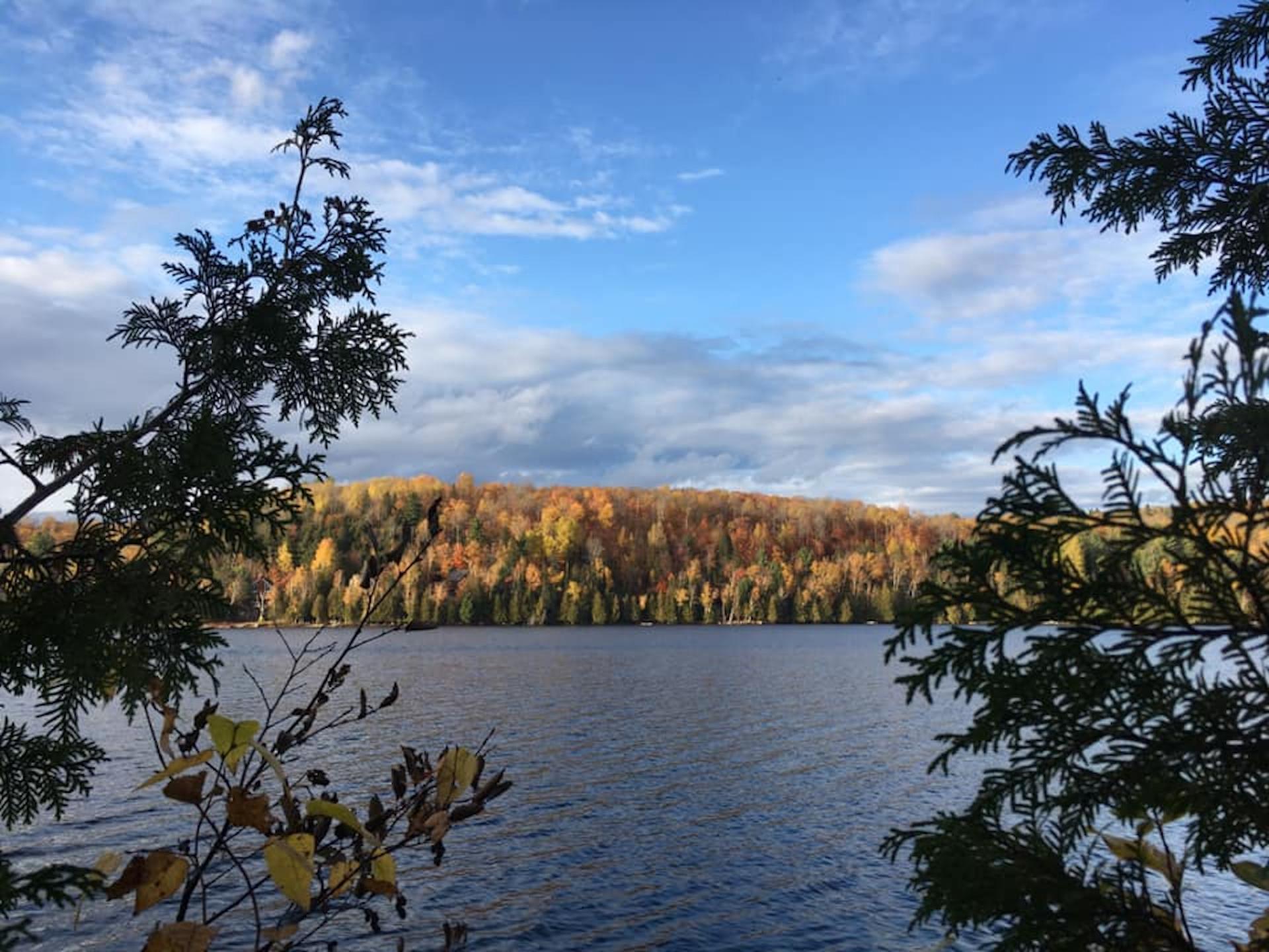 Josée Desrosiers L'automne au Lac Brûlé